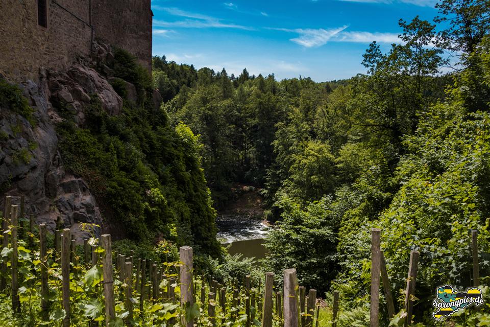 Ausblick Burg Kriebstein