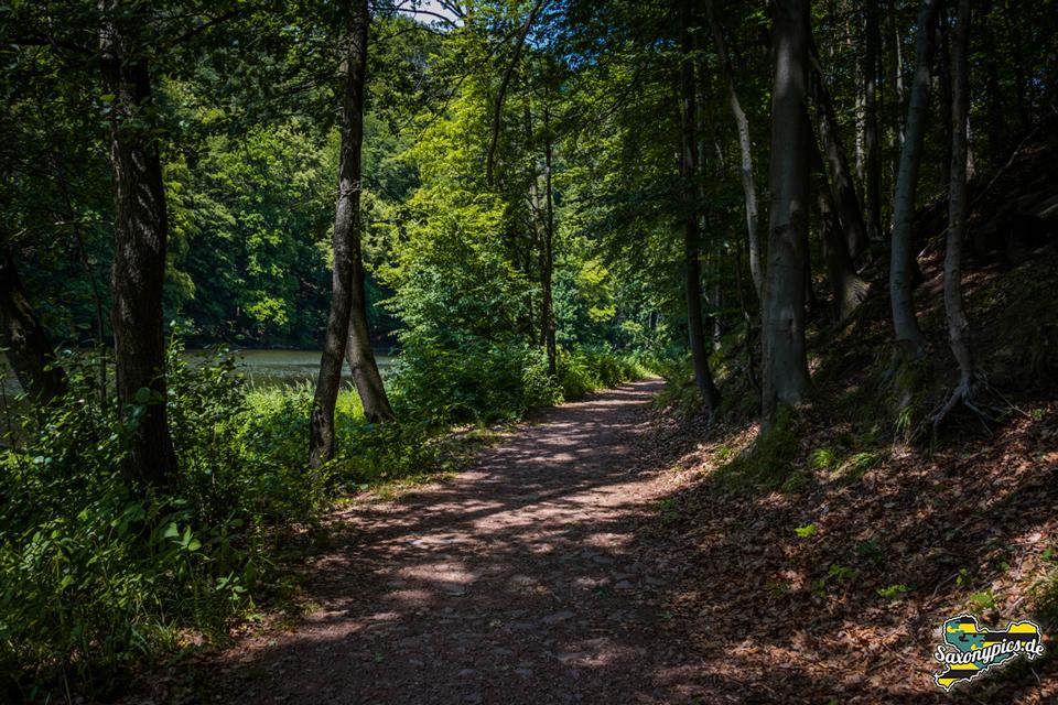 Wanderweg am Ufer der Zschopau